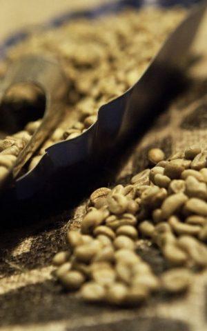 La-Produzione-Caffe-Milani-1024x683